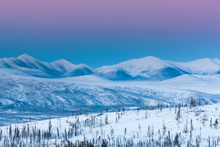 Arctic palette of pink and purple sky lights the evening winter sky in the foothills of the Brooks Range mountains, Alaska. (Patrick J. Endres / AlaskaPhotoGraphics.com)
