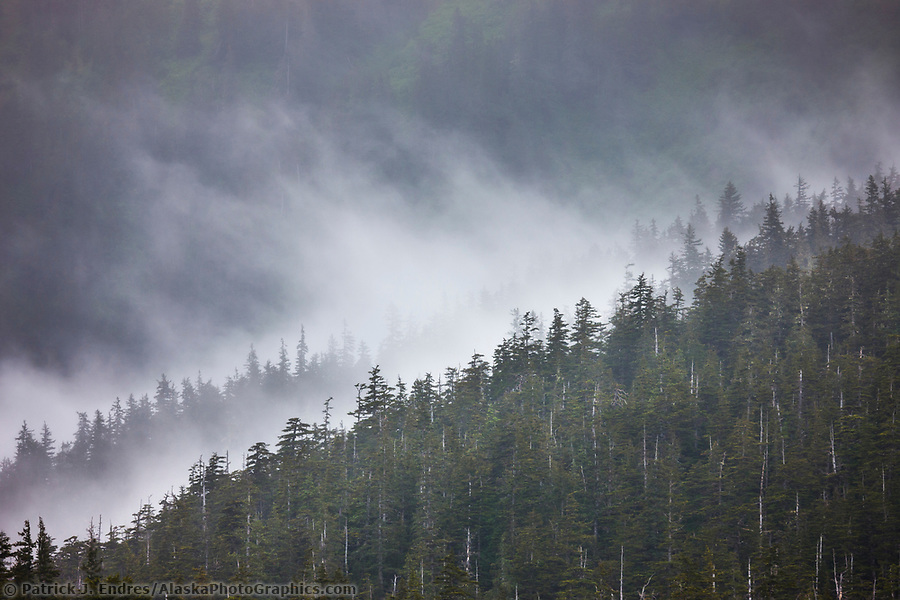 Fog and mist in the Chugach National Forest, Unakwik Inlet, Prince William Sound, Alaska. (Patrick J. Endres / AlaskaPhotoGraphics.com)