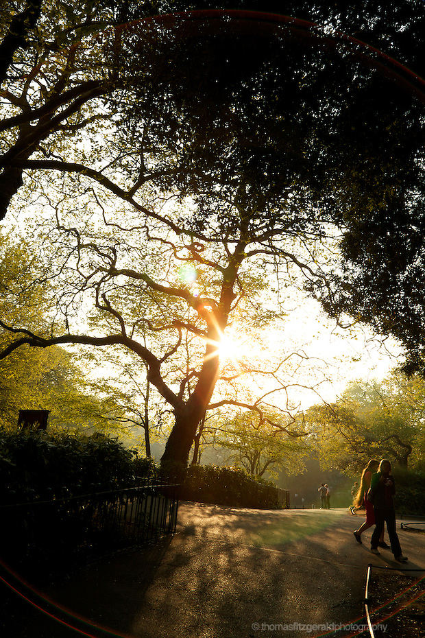 St. Stephen's Green, Dublin, April 2011: People walking through the park, as the sun goes down behind the trees giving a brilliant glow to the foliage (Thomas Fitzgerald)