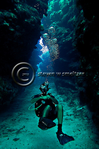 Diving Eagles Nest, West Side Grand Cayman (Steven Smeltzer)