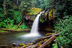 Iron Creek Falls, Mt. St. Helens National Volcanic Monument, Washington, US (Roddy Scheer)