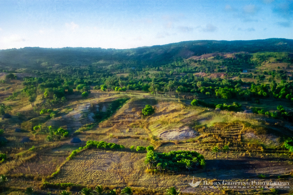 Pulau Sawu, East Nusa Tenggara. The dry and hot winds from Australia makes the landscape look torrid, for long periods of the year there is no rain here (from helicopter). (Bjorn Grotting)