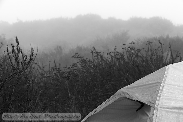 Fog shrouds the landscape on a morning at Crystal Cove State Park's Lower Moro campground.  My REI Quarterdome T2's tent's rainfly is covered in water droplets. (Marc C. Perkins)