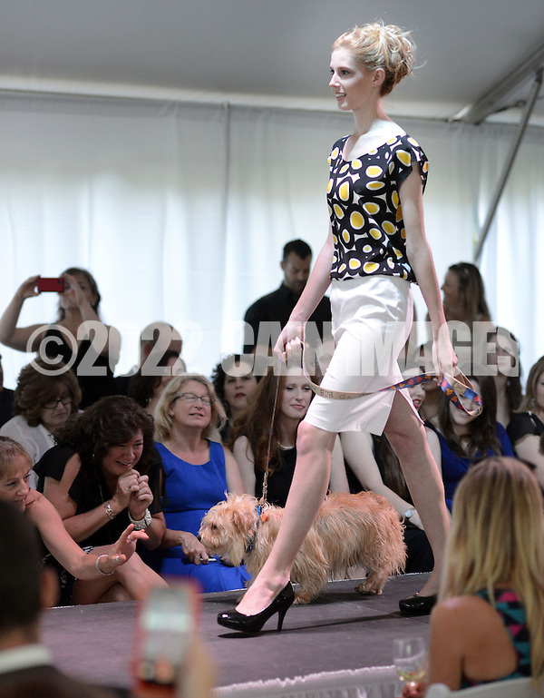 DOYLESTOWN, PA - JUNE 06: A model walks the runway with Shaggy the dog during the Canines on the Catwalk fashion show June 6, 2014 at the Michener Museum in Doylestown, Pennsylvania. Canines on the Catwalk is a fashion show coupling professional models, high-end clothes and dogs. The program benefits animal rescue  (Photo by William Thomas Cain/Cain Images) (William Thomas Cain)