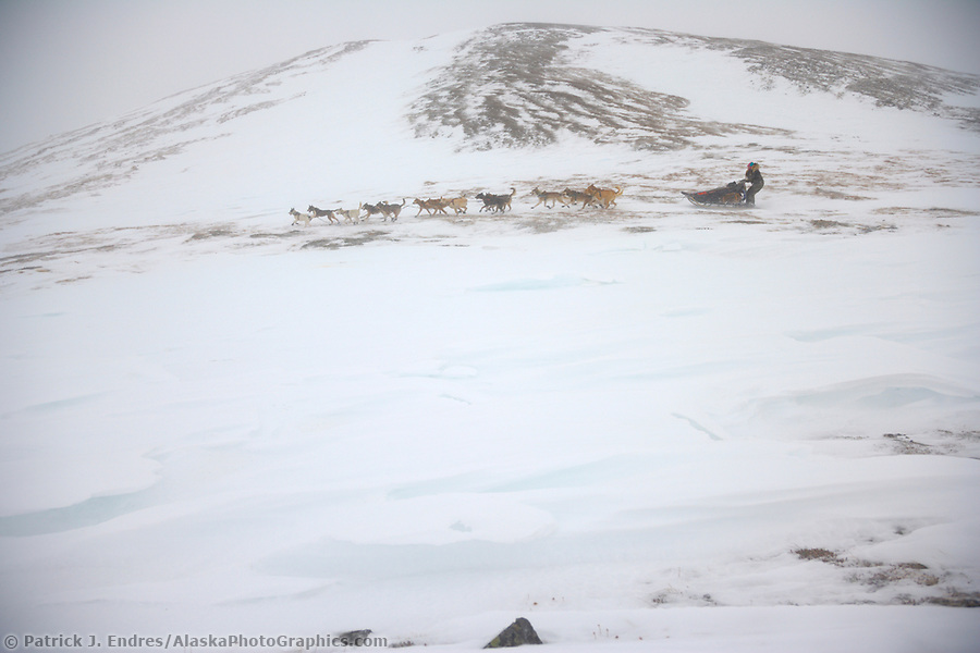 2006 Yukon Quest musher Kelley Griffin in near whiteout conditions on Eagle Summit. (Patrick J. Endres / AlaskaPhotoGraphics.com)