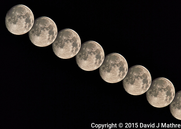 Nearly Full Moon Sequence. (David J Mathre)