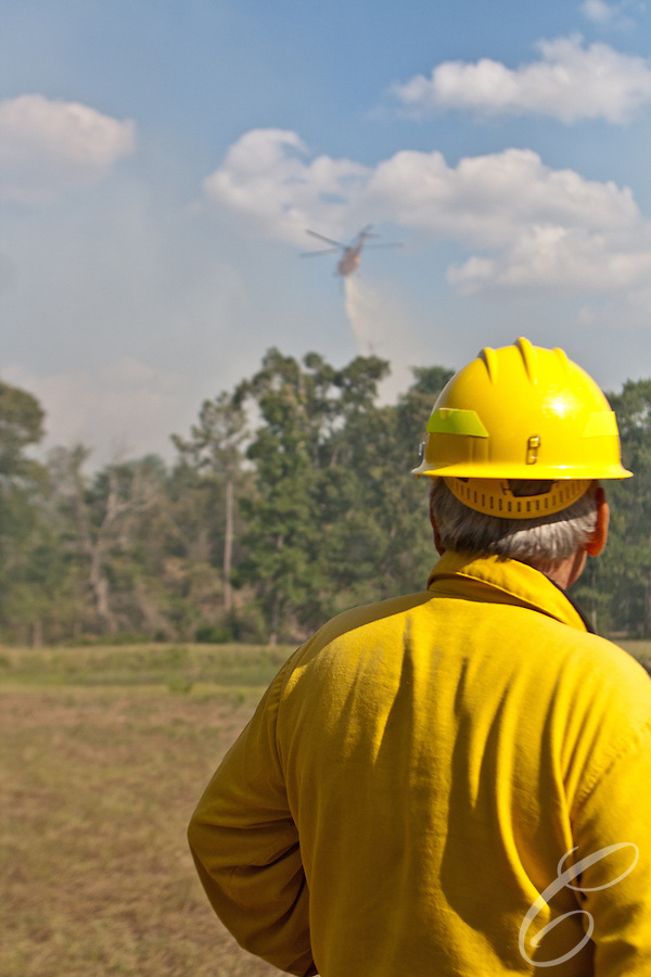 Public Information Officer Lee Bentley from Sonnora, California watches as an aerial firefighting helicopter drops retardant on the Dyer fire in Grimes County, Texas on June 21, 2011. (Matthew Crawley)