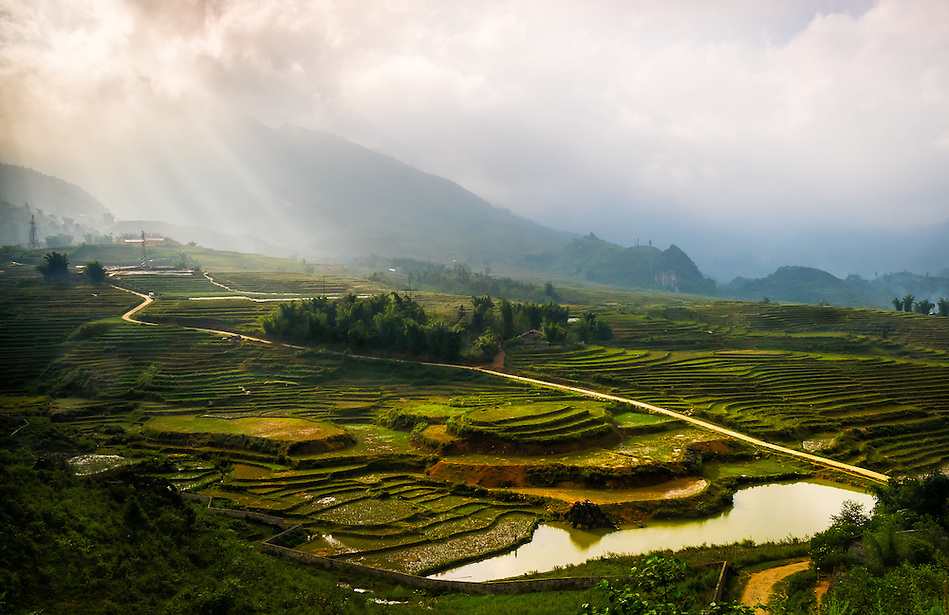 SAPA, VIETNAM - CIRCA SEPTEMBER 2014:  View of typical rice  paddy landscape in Sapa, north Vietnam. (Daniel Korzeniewski)