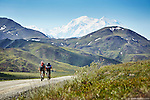 Two cyclists tour the Denali National Park road on bicycle with Mt. McKinley towering in the distance. (Seth K Hughes)