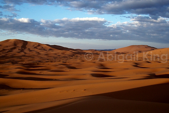 Sand dunes in the sands of the Sahara, Morocco (Abigail King)