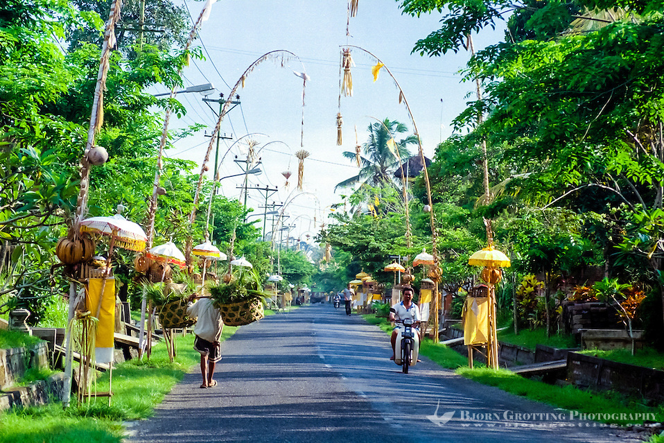 Bali, Badung, Mengwi. Streets in Mengwi decorated for a ceremony. (Photo Bjorn Grotting)