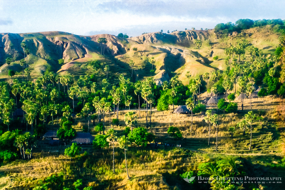 Pulau Sawu, East Nusa Tenggara. A village with traditional houses built by timber and leafs from palm trees. A group of curiously waving people can be seen in the lower center of the image. This is from southern Sawu (from helicopter) (Bjorn Grotting)