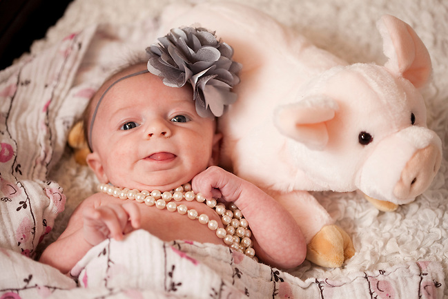 11/11/11 � READING � Viola Phoenix Magro at 6 weeks on Nov. 11, 2011. (Kelvin Ma)