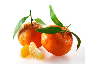 Fresh mandarins fruits with leaves (By food photographer Paul Williams. http://www.funkyfood.co.uk)
