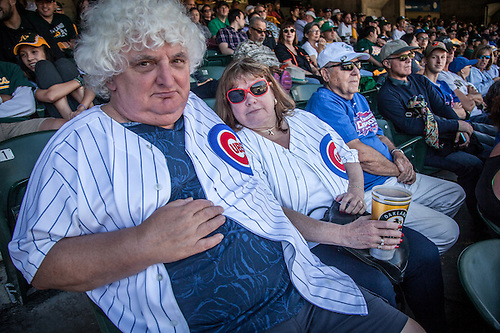 Chicago Cub fans John and Janice watch Cubs sweep the Oakland Athletics at the Colloseum in Oakland. (Clark James Mishler)