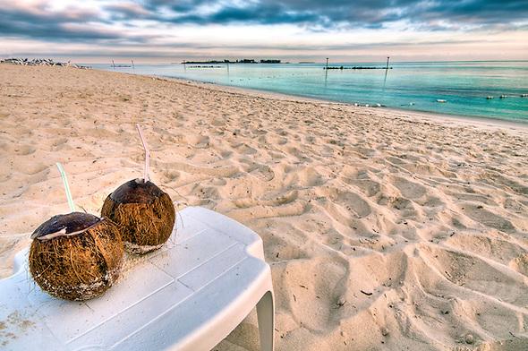 Morning at the Beach.jpg