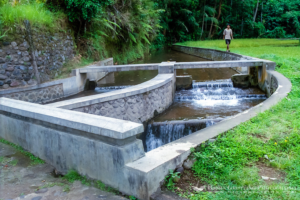 Bali, Gianyar, Gunung Kawi. Water for irrigation of rice fields on Bali. The watersystem is always managed by the farmer with the lowest fields, in that way all the farmers are guaranteed a regular waterflow. (Photo Bjorn Grotting)