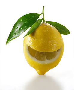 Fresh whole lemons with leaves (By food photographer Paul Williams. http://www.funkyfood.co.uk)