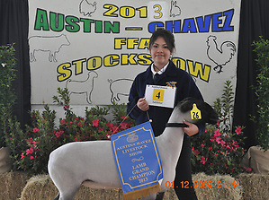 Grand Champion Lamb: Andrea Ruiz, Austin HS, $6,170. (Web Team)