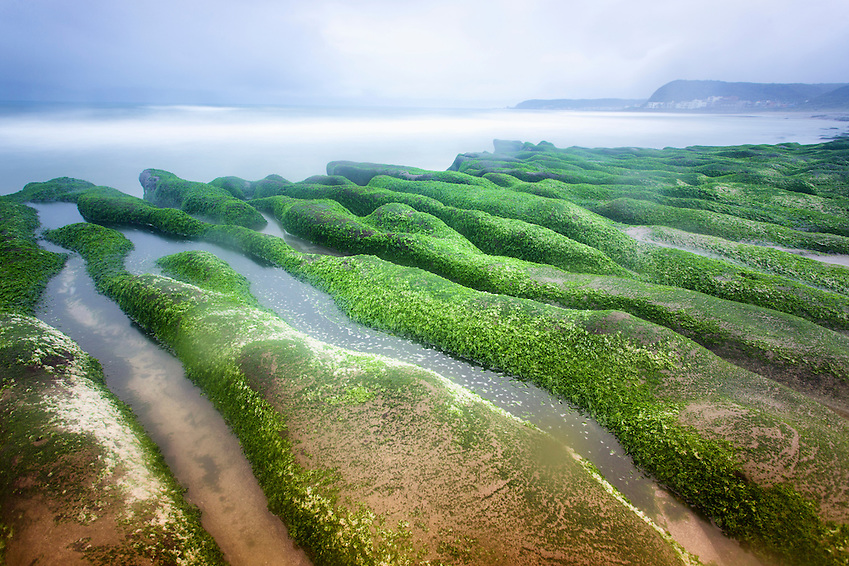 Algae covered rocks at Laomei Green Reef. (Craig Ferguson)