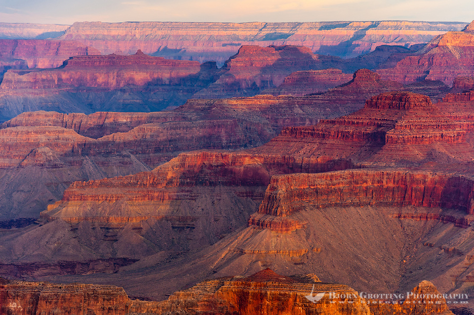 United States, Arizona, Grand Canyon. Sunrise at Yavapai Point. The morning sun colours everything red. (Photo Bjorn Grotting)
