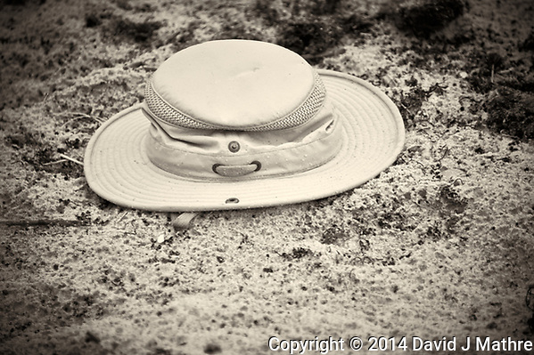 Lost Hat in the Sand at Playalinda Beach. Merritt Island, Florida. Image taken with a Nikon 700 camera and 28-300 mm VR lens (ISO 3200, 300 mm, f/5.6, 1/60 sec). (David J Mathre)