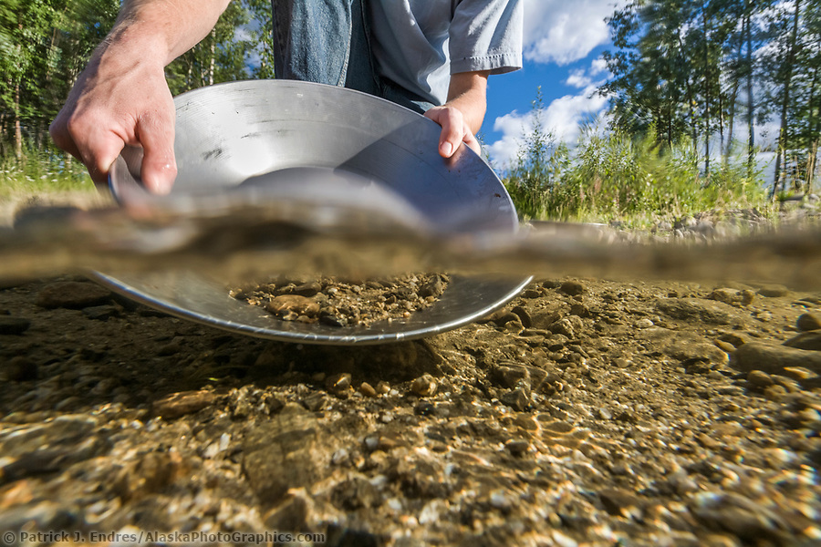 Panning for gold in the crystal clear water of Monument creek, Interior, Alaska. (Patrick J. Endres / AlaskaPhotoGraphics.com)