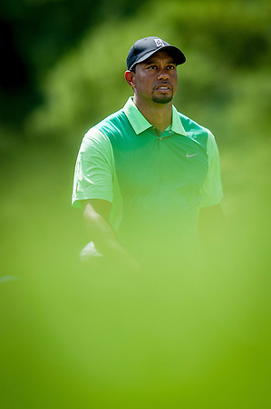 Tiger Woods walks off the tee on the 2nd hole during the first round of the Quicken Loans National golf tournament on Wednesday at Congressional Country Club in Bethesda, Maryland. This marked  Woods' return to competition for the first time in three months after having surgery just a week before the Masters in April of this year. (Pete Marovich/Corbis)