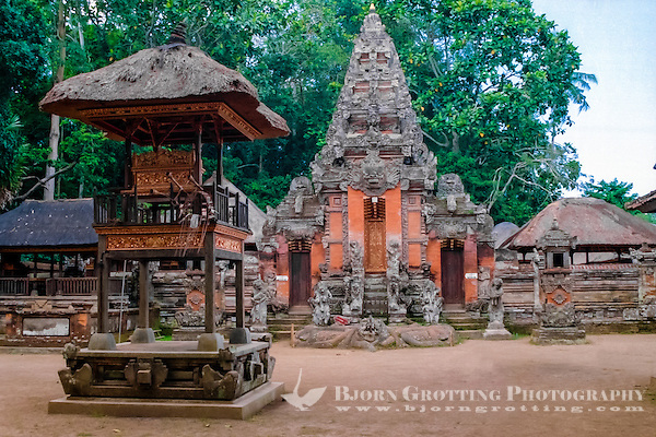 Bali, Gianyar, Ubud. Pura Dalem Agung in the monkey forest. (Photo Bjorn Grotting)