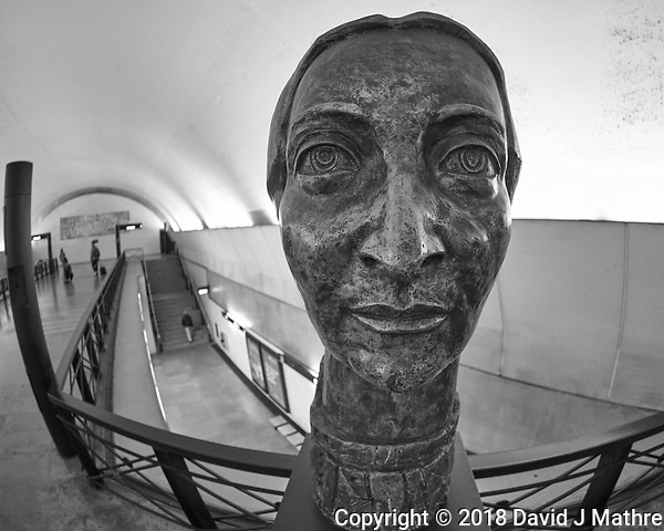 Statue in the Subway Station. Image taken with a Nikon D850 camera and 8-15 mm fisheye lens. (DAVID J MATHRE)