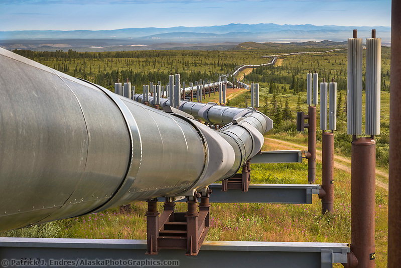 Trans Alaska oil pipeline traverses the tundra landscape of interior Alaska, south of Delta Junction. (Patrick J. Endres / AlaskaPhotoGraphics.com)