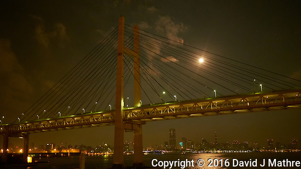 The MV World Odyssey about to pass under the Yokohama Bay Bridge as we arrived in Yokohama, Japan. Image taken with a Fuji X-T1 camera and 23 mm f/1.4 lens (ISO 1600, 23 mm, f/1.4, 1/30 sec). (David J Mathre)