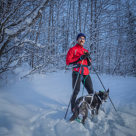 """We tried skijoring last year, but it didn't go well""  -Matt Komatsu with his Fairbanks rescue dog, Bonnie, on his way to the Coastal Trail, Anchorage  indiesummit@yahoo.com (Clark James Mishler)"