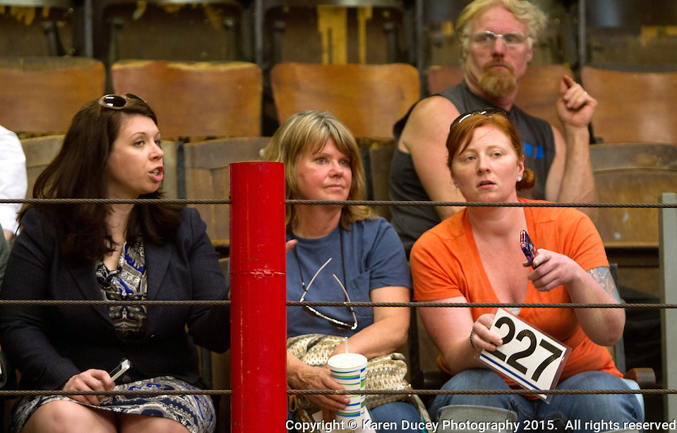 From left to right: Rep. Michelle Caldier (R- Port Orchard), Rhonda Froode, and Mary Kate Fowler from Lake Bay, Wash. try to figure out who else was bidding a pony she had previously rescued, during the ponies' auction at the Enumclaw Sale Pavilion in Enumclaw, Wash. on May 9, 2015. (photo © Karen Ducey Photography) (Karen Ducey/Karen Ducey Photography)