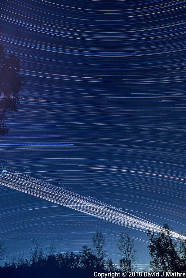 Star trails 20:05-03:20. Composite of images taken with a Nikon D810a camera and 19 mm PC-E lens (ISO 200, 19 mm, f/5.6, 120 sec) (David J Mathre)
