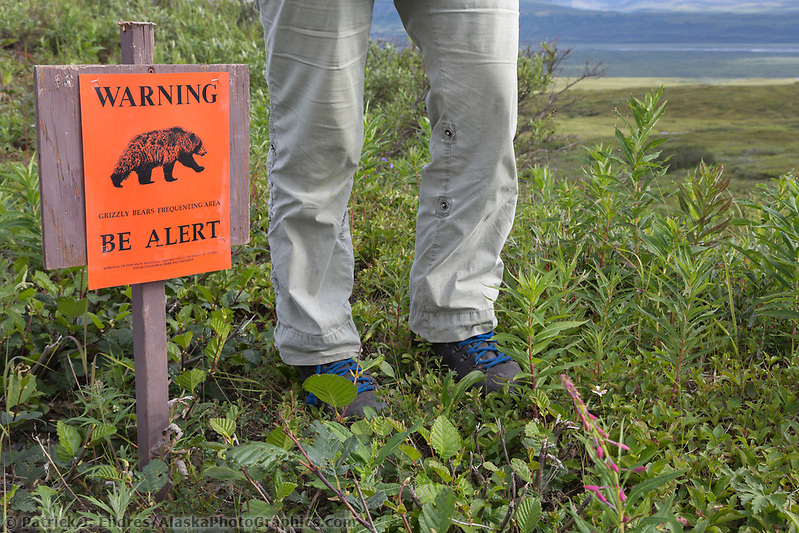 Denali National Park, Alaska (Patrick J Endres / AlaskaPhotoGraphics.com)