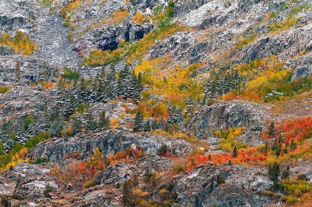 Autumn hues and fresh powder, John Muir Wilderness, California