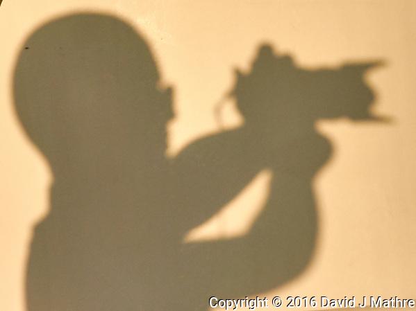 Sunrise Breakfast Club. Shadow Alien Photographer. Image taken with a Nikon 1 V3 camera and 70-300 mm VR lens (David J Mathre)