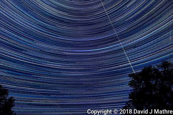 Star Trails looking up and a little south. Composite of 697 of images taken with a Nikon D850 camera and 19 mm f/4 PC-E lens (ISO 200, 19 mm, f/4, 30 sec). Raw images processed with Capture One Pro and the composite generated using Photoshop CC (statistics, maximum). (DAVID J MATHRE)