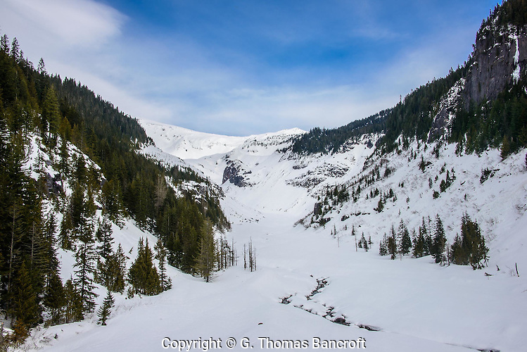 The Nisqually River orginates from the terminal end of the Nisqually Glacier which is just around the left corner of the photo. (G. Thomas Bancroft)
