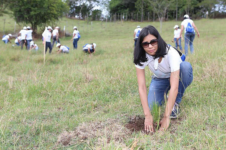 La señora Carmen Natalia López, vicepresidente Área Análisis y Formalización de Créditos Empresariales, participó junto a su equipo en la siembra.