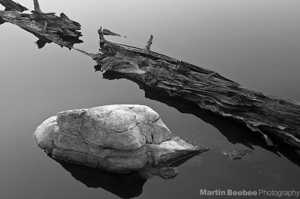 Rock and log in alpine lake, Sierra Nevada, Toiyabe National Forest, California (Martin Beebee)