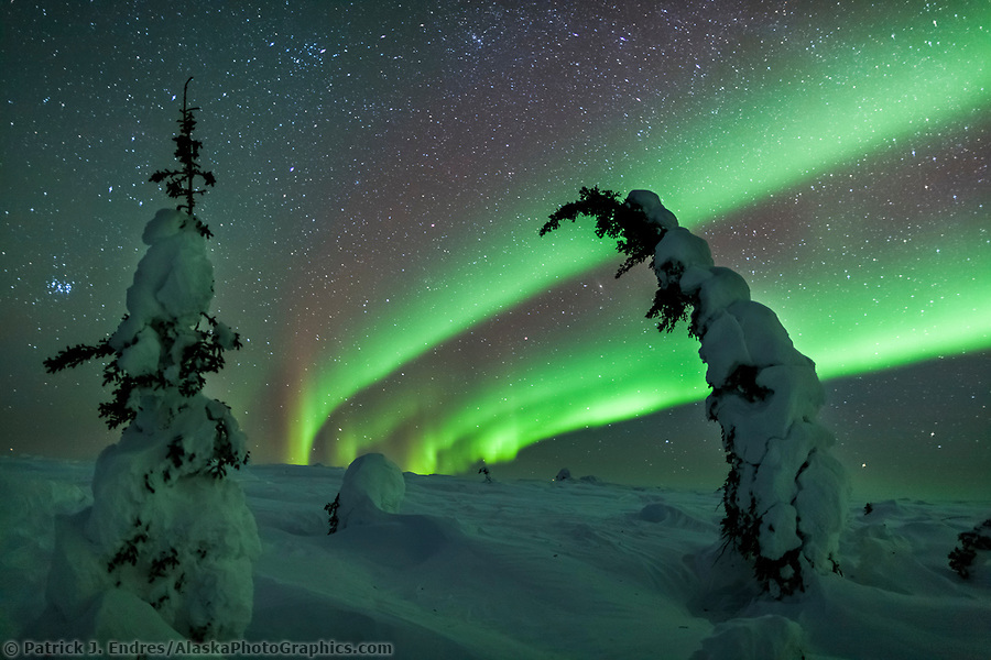 The Northern lights arc over the snow covered tundra in Interior, Alaska. (Patrick J Endres / AlaskaPhotoGraphics.com)