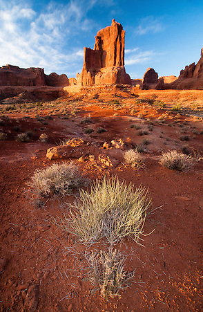 Arches National Park, Utah, US (Roddy Scheer)