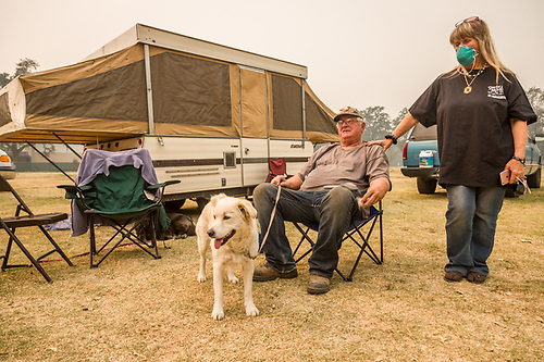 """So far, the fire has not jumped the road and our house is still standing.""  -Lee and Susan Gold were evacuated from their home on Petrified Forest Road near Calistoga and wait for news with their dog, Button, at the Napa Fairgrounds in Calistoga. (Clark James Mishler)"