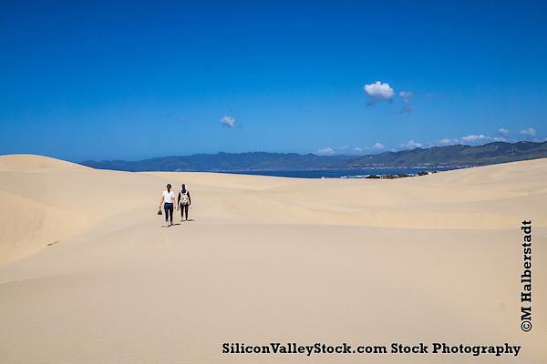 Dunes (Michael Halberstadt)