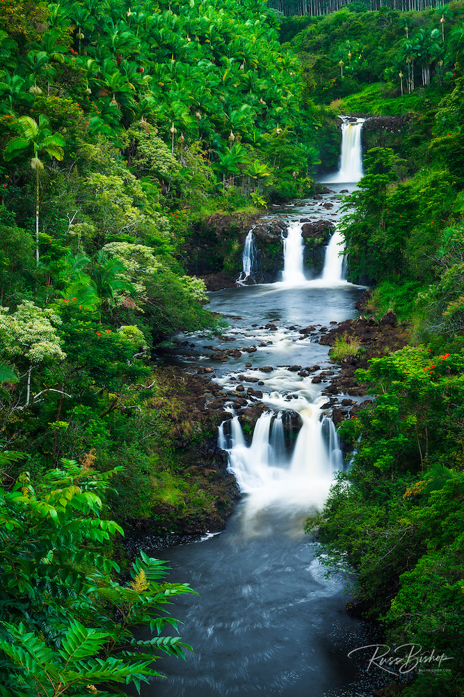 Umauma Falls along the lush Hamakua Coast, The Big Island, Hawaii
