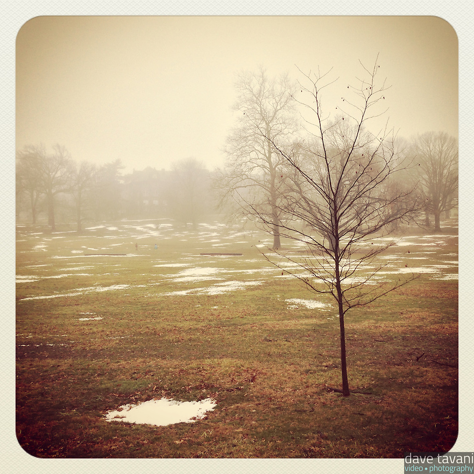 Fog fills the field at the New Covenant campus in Mt. Airy on February 11, 2013. (Dave Tavani)