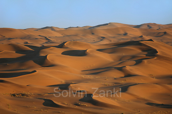 Nahe der Gobabeb Forschungsstation kann man die Dünen der Namib erklimmen und hat bei Sonnenaufgang einen atemberaubenden Ausblick über das rote Sand-Meer, das durch die Kraft des Windes geformt wird. Die Dünen wandern dabei in nord-westliche Richtung vorwärts, bis sie auf das Bett des Kuiseb-Flusses treffen. Das Wasser in diesem Rivier (Trockenfluss) fließt selten, aber dennoch häufig genug, um ein Fortschreiten der Dünen zu verhindern.  Position 23°33.704 S, 15°02.466 E l Namib desert. Close to the Gobabeb training and research centre, at 23°33.704 S, 15°02.466 E   The Namib Dune Sea is formed by the powerful force of desert winds. These winds gradually push the dunes in a north-westerly direction. (Solvin Zankl)