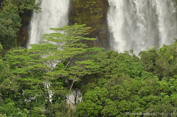 Opaeka'a Falls, Kauai, Hawaii (Martin Beebee Photography)
